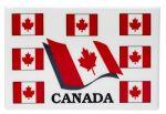 """CDA Magnet>2""""x3"""" 8 Flags"""