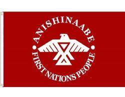 3'x5' Flag>Anishinaabe